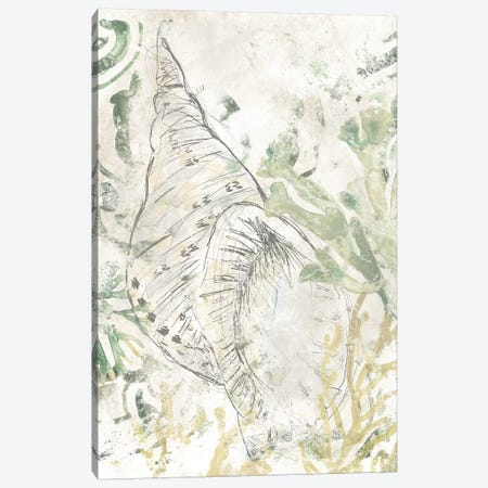 Verdant Shell Fresco II Canvas Print #JEV2315} by June Erica Vess Canvas Wall Art