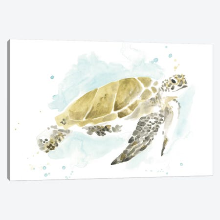 Watercolor Sea Turtle Study I Canvas Print #JEV2324} by June Erica Vess Canvas Art Print