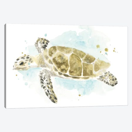 Watercolor Sea Turtle Study II Canvas Print #JEV2325} by June Erica Vess Canvas Art Print
