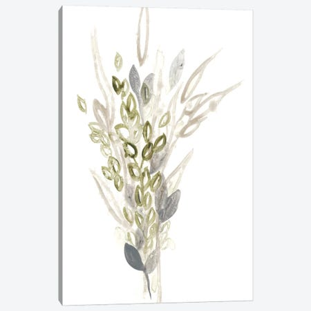 Botanica Whimsy I Canvas Print #JEV263} by June Erica Vess Canvas Artwork