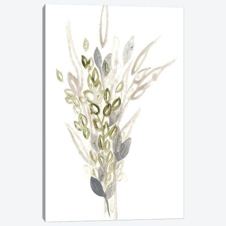 Botanica Whimsy I Canvas Print #JEV263} by June Erica Vess Canvas Artwork