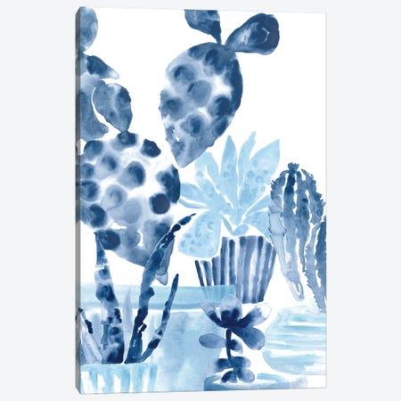 Indigo Succulent II Canvas Print #JEV2646} by June Erica Vess Canvas Artwork