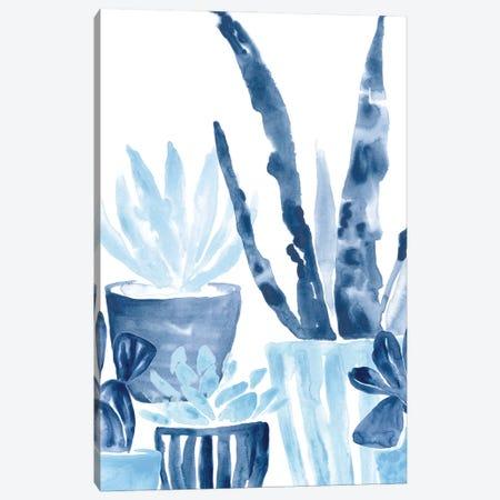 Indigo Succulent III Canvas Print #JEV2647} by June Erica Vess Canvas Artwork