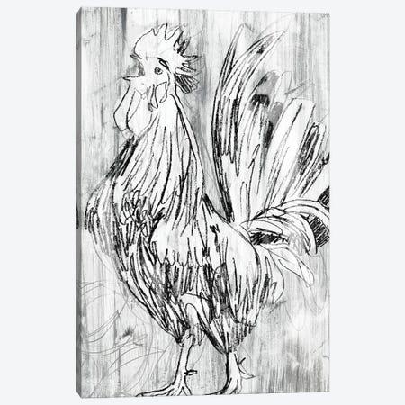 Barnwood Flock II Canvas Print #JEV2684} by June Erica Vess Canvas Art