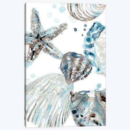 Cerulean Seashells II Canvas Print #JEV2705} by June Erica Vess Art Print
