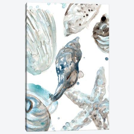 Cerulean Seashells III Canvas Print #JEV2706} by June Erica Vess Art Print