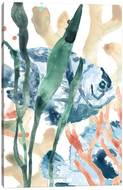In the Kelp I Canvas Art Print