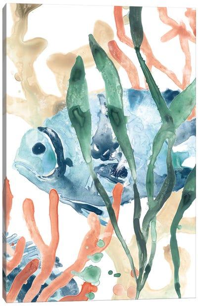 In the Kelp II Canvas Art Print