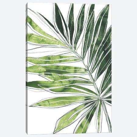 Expressive Palm IV Canvas Print #JEV2802} by June Erica Vess Canvas Print