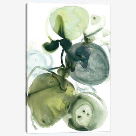 Orbital Lichen I Canvas Print #JEV2856} by June Erica Vess Canvas Art Print