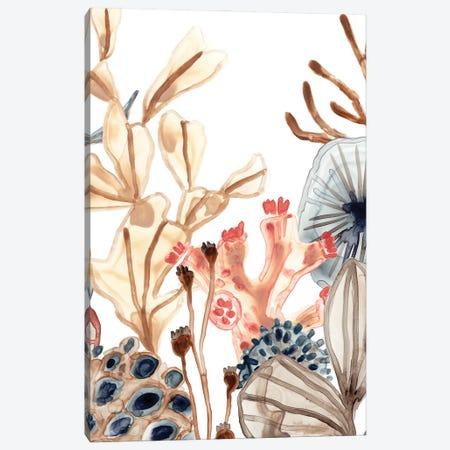 Ocean Chorus I Canvas Print #JEV2995} by June Erica Vess Canvas Art