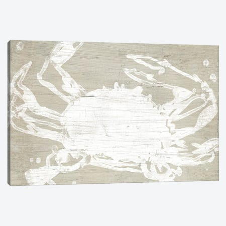 Weathered Crab II Canvas Print #JEV3049} by June Erica Vess Canvas Art