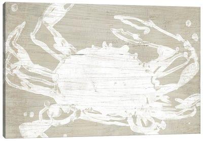 Weathered Crab II Canvas Art Print