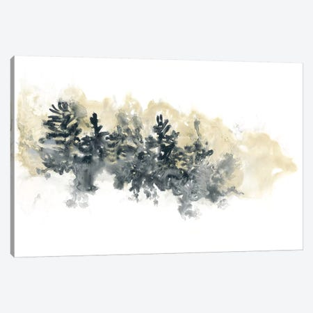 Misty Hillside I Canvas Print #JEV305} by June Erica Vess Canvas Art