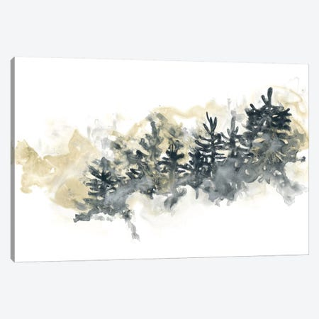 Misty Hillside II Canvas Print #JEV306} by June Erica Vess Canvas Wall Art