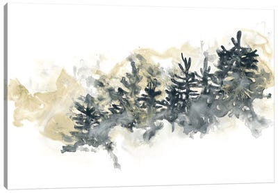 Misty Hillside II Canvas Art Print