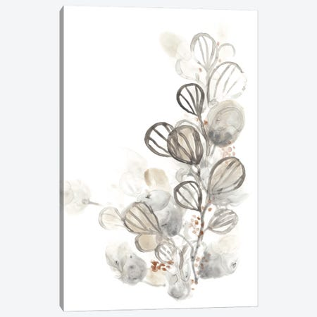 Neutral Botany I Canvas Print #JEV312} by June Erica Vess Canvas Artwork