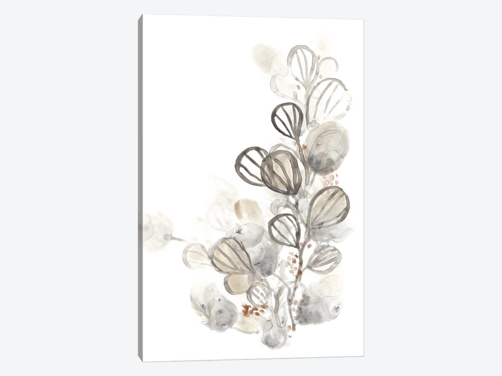 Neutral Botany I by June Erica Vess 1-piece Canvas Art Print