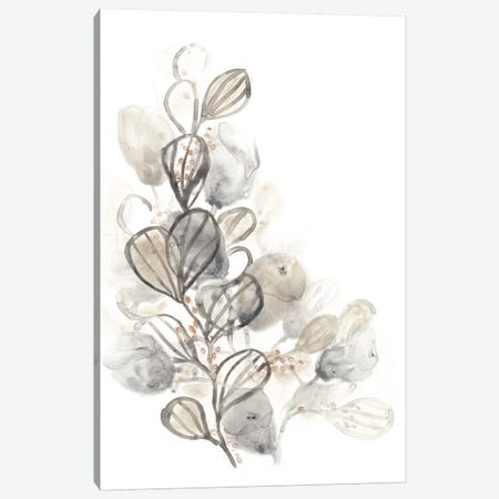 Neutral Botany II Canvas Print #JEV313} by June Erica Vess Canvas Art