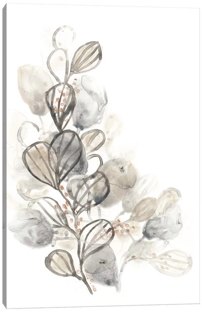 Neutral Botany II Canvas Art Print