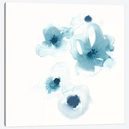 Protea Blue III Canvas Print #JEV320} by June Erica Vess Canvas Print