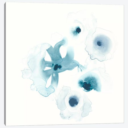 Protea Blue IV Canvas Print #JEV321} by June Erica Vess Canvas Print