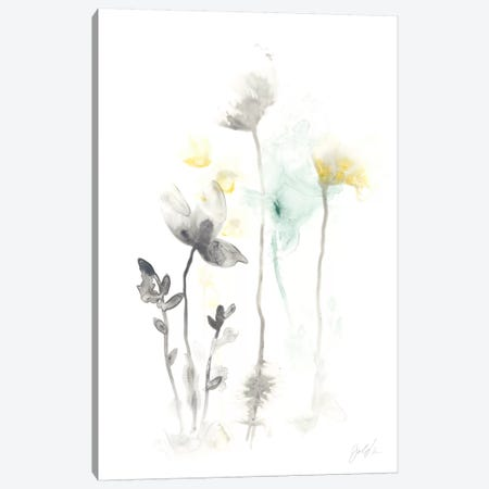 Stem Illusion II Canvas Print #JEV334} by June Erica Vess Canvas Print