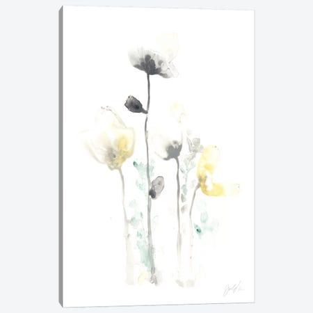 Stem Illusion IV Canvas Print #JEV336} by June Erica Vess Canvas Art Print