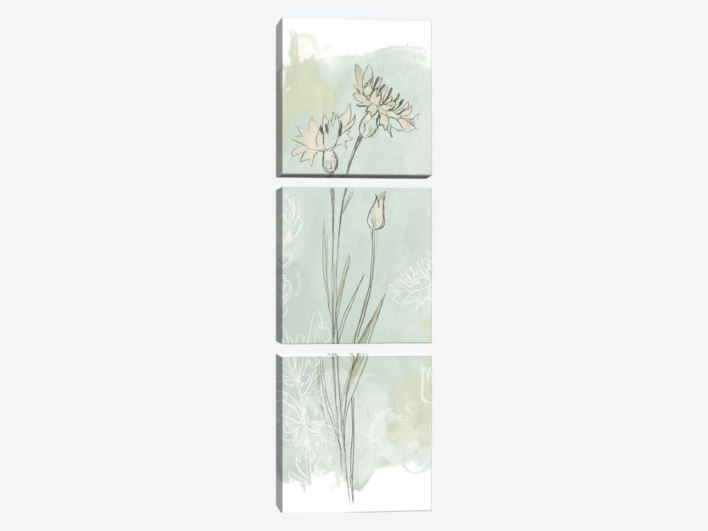 Stone Flower Study I by June Erica Vess 3-piece Canvas Wall Art