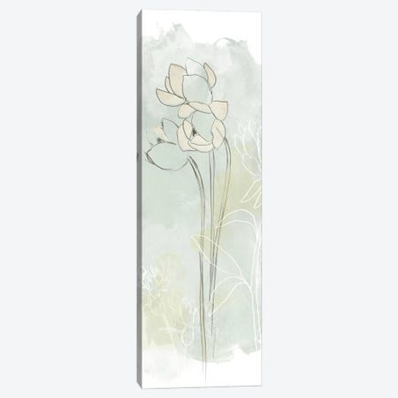 Stone Flower Study IV Canvas Print #JEV340} by June Erica Vess Canvas Print