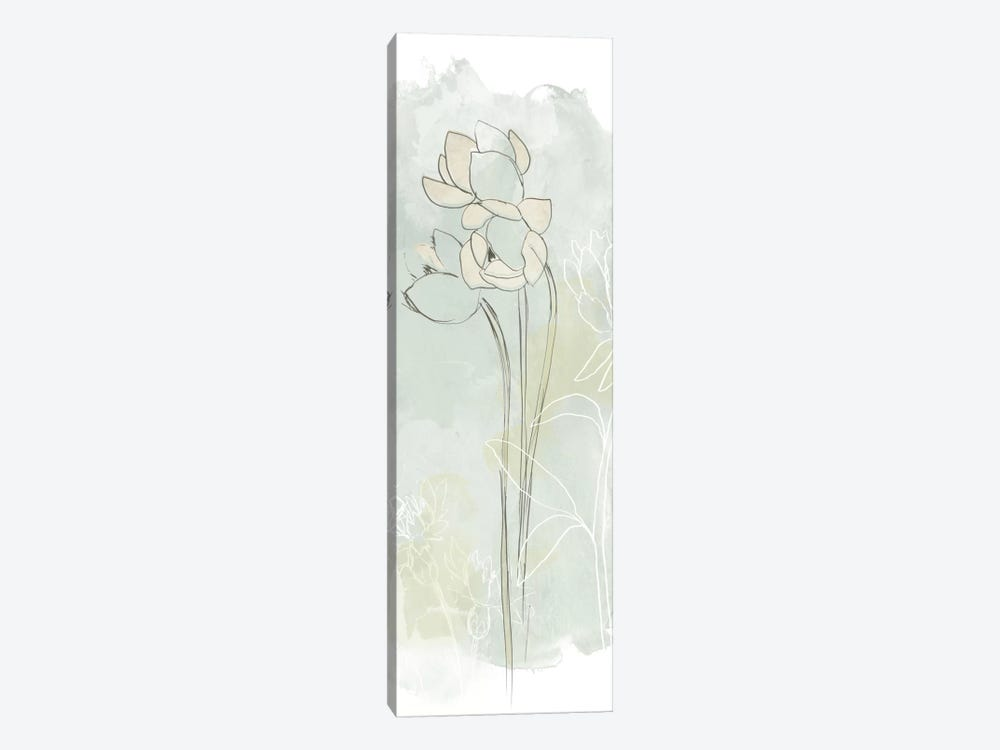 Stone Flower Study IV by June Erica Vess 1-piece Canvas Artwork