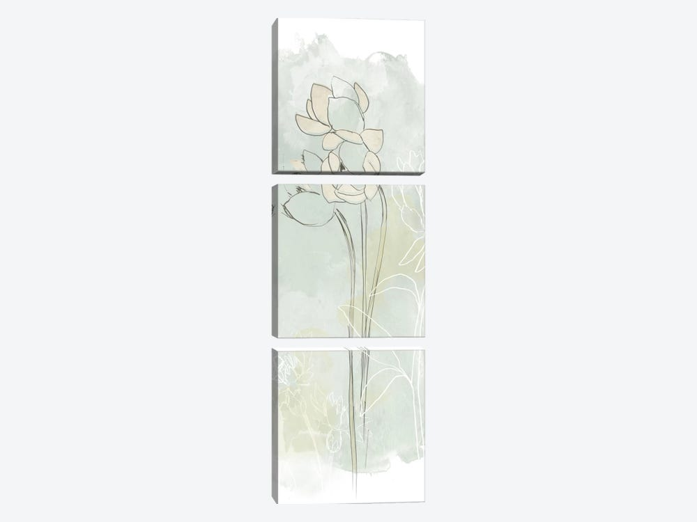 Stone Flower Study IV by June Erica Vess 3-piece Canvas Wall Art