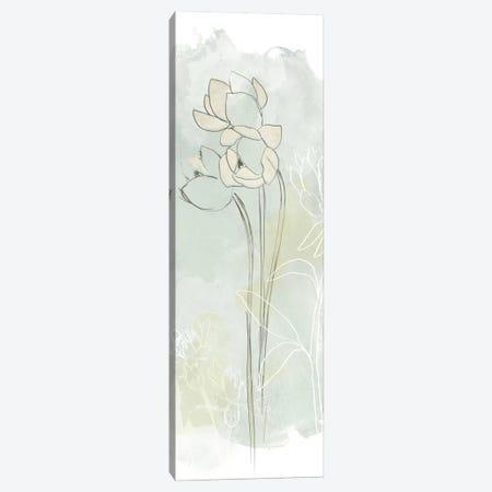 Stone Flower Study IV Canvas Print #JEV340} by June Erica Vess Canvas Print