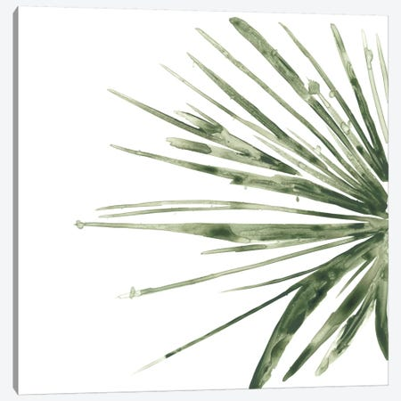 Verdant Impressions IV Canvas Print #JEV352} by June Erica Vess Canvas Art