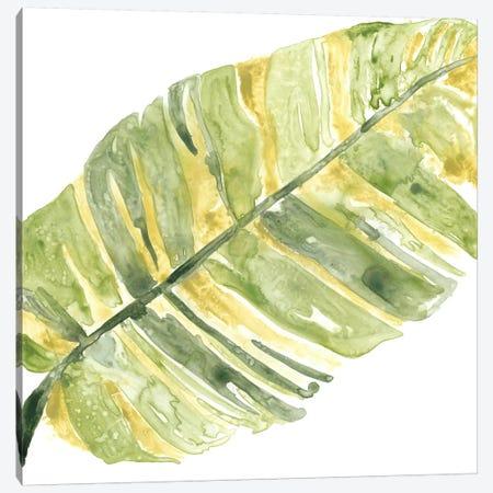 Verdant Impressions V Canvas Print #JEV354} by June Erica Vess Art Print