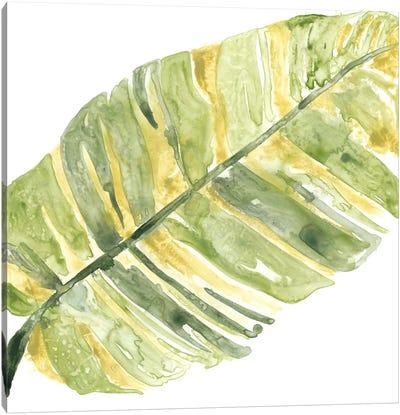 Verdant Impressions V Canvas Art Print