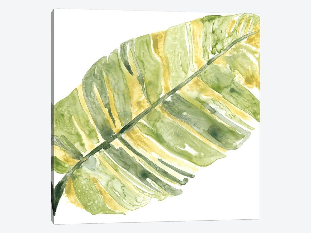 Verdant Impressions V by June Erica Vess 1-piece Canvas Art Print