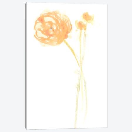 Bouquet Blush IV Canvas Print #JEV362} by June Erica Vess Canvas Print