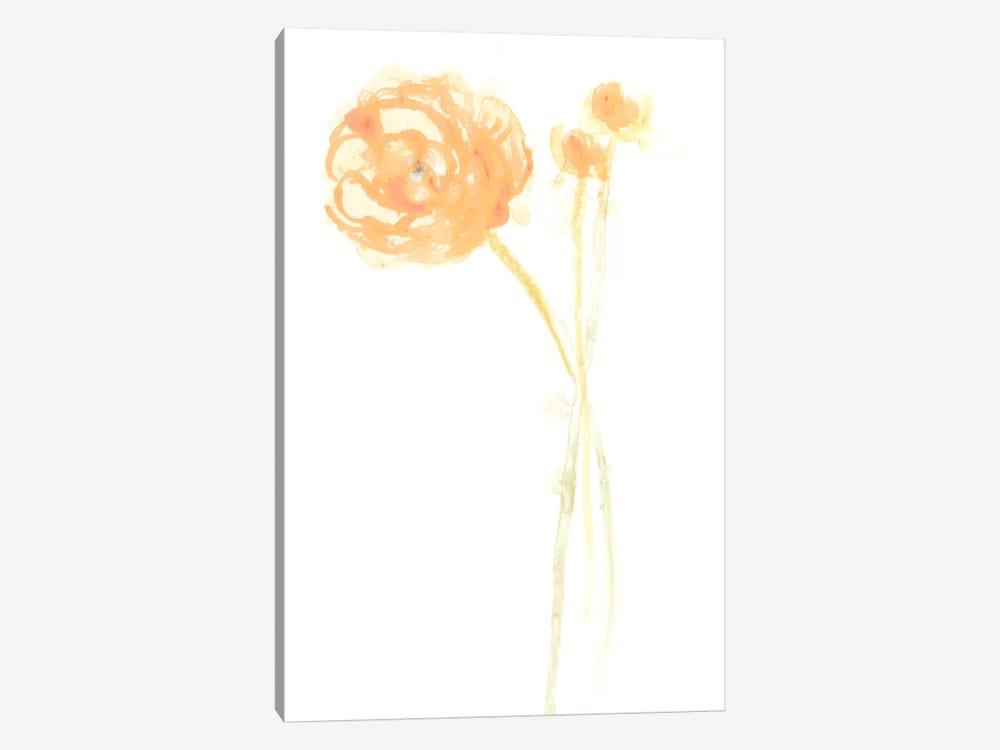 Bouquet Blush IV by June Erica Vess 1-piece Canvas Artwork