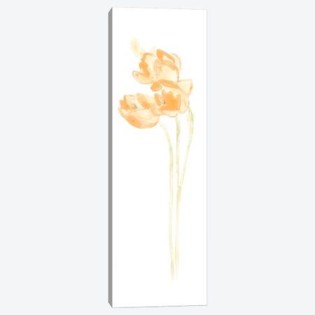 Bouquet Blush V Canvas Print #JEV363} by June Erica Vess Canvas Art Print