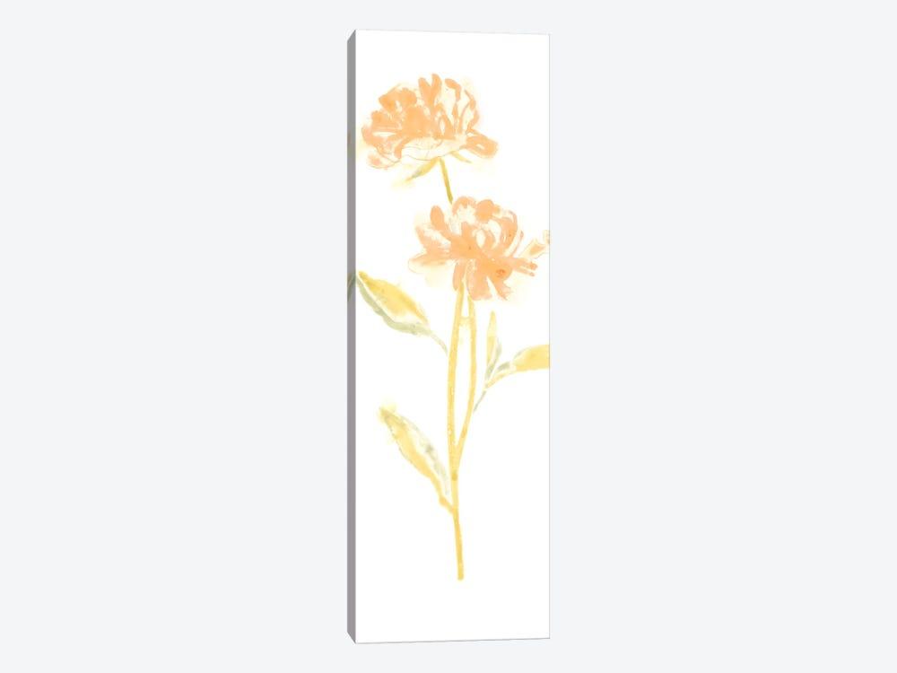 Bouquet Blush VII by June Erica Vess 1-piece Canvas Art Print