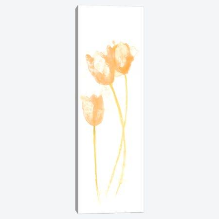Bouquet Blush VIII Canvas Print #JEV366} by June Erica Vess Canvas Art