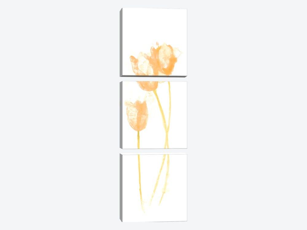 Bouquet Blush VIII by June Erica Vess 3-piece Canvas Artwork