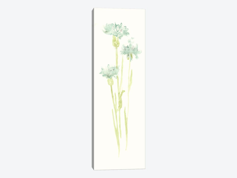 Cornflower Study IV by June Erica Vess 1-piece Art Print