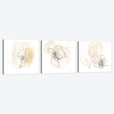 Infinite Variable Triptych Canvas Print Set #JEV3HSET001} by June Erica Vess Canvas Art