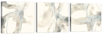 Divination Triptych Canvas Art Print