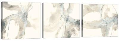 Divination Triptych Canvas Art Print