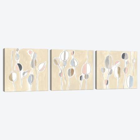 String Garden Triptych Canvas Print Set #JEV3HSET009} by June Erica Vess Canvas Art