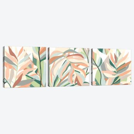 Soft Tropicals Triptych Canvas Print Set #JEV3HSET012} by June Erica Vess Canvas Print