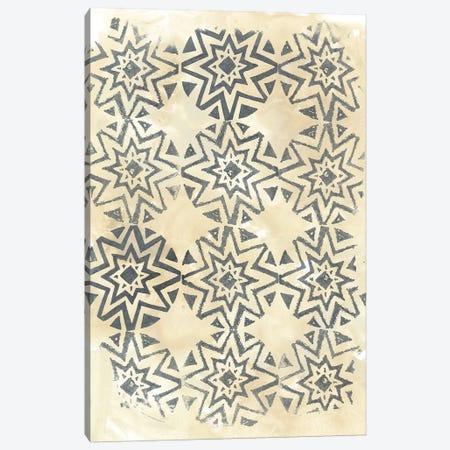 Ancient Textile IV Canvas Print #JEV465} by June Erica Vess Canvas Print